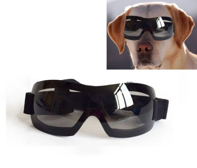 Dog Sunglasses Dog Glasses, UV Protection for Large Dog.