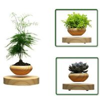 LED Levitating Air Bonsai Pot Magnetic Levitation Suspension Flower Floating Pot Potted Plant Levitating plant Pot-Only the flower pot ,Other not including